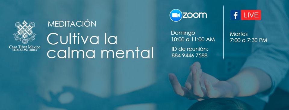 meditacion zoom facebook live